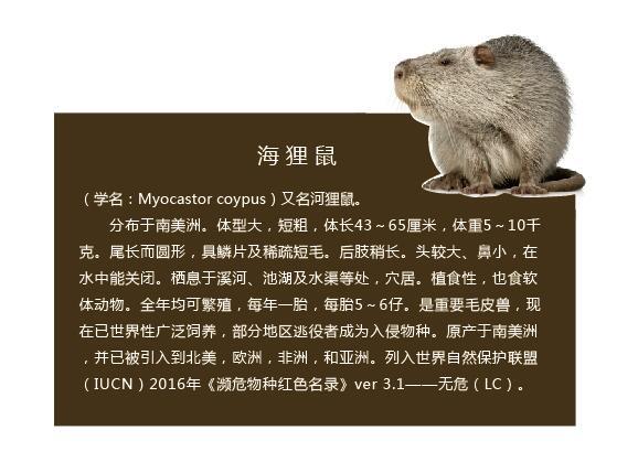 济南广告牌制作